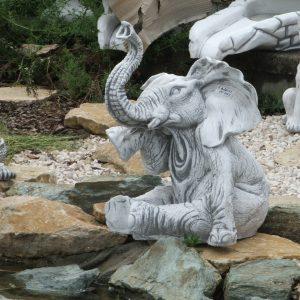 Elefánt parton ülő