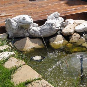 Tavi dísz fatörzsön vízköpő béka család