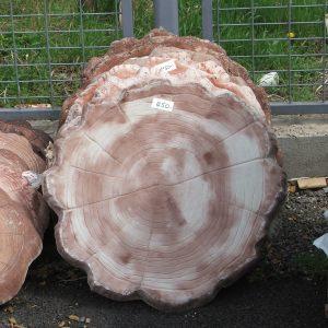 Kerti tipegő fatörzs mintás kő nagy